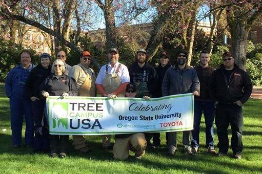 Landscape Services team celebrates 10 years
